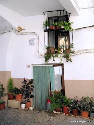 Casa-Cuna-Gudalupe