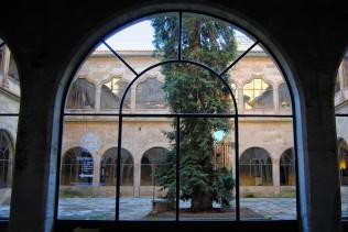 Villa_04728_Universidad_Escuelas_Mayores