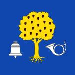 bandera_de_navalmoral_de_la_mata