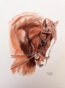 caballo18