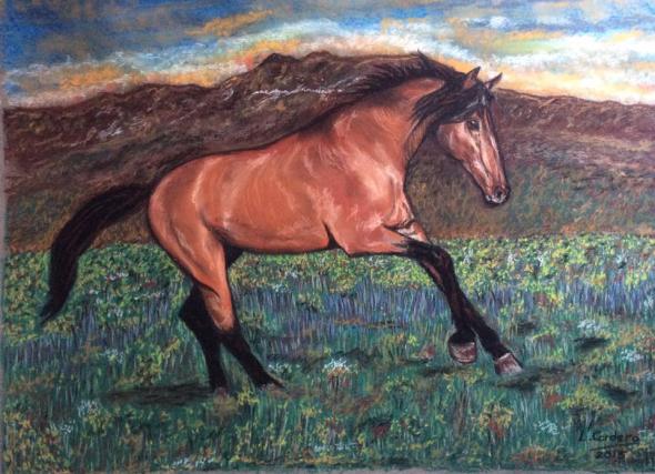 caballo23