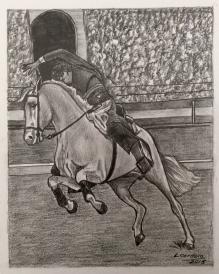 caballo31
