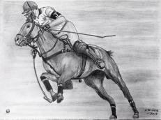 caballo8