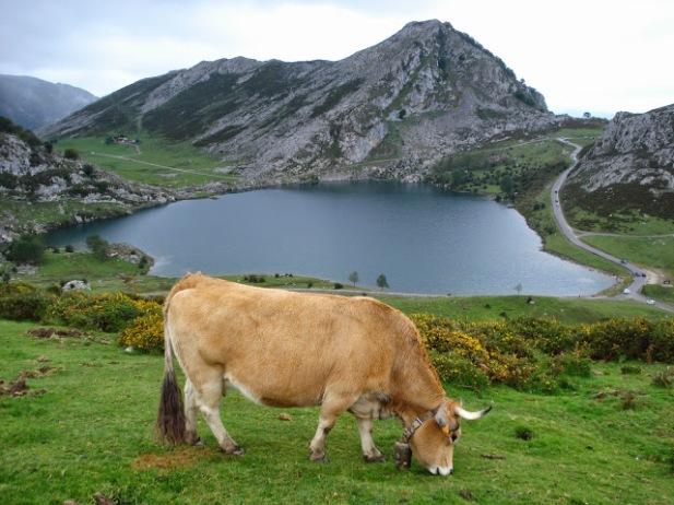 Asturias_Lago_Enol_