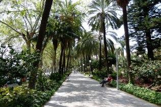 malaga-costa-del-sol-spain-paseo-del-parque-
