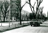 avenida de colón 1984