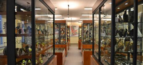 museo de geología uoviedo