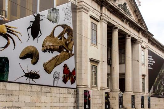Museu-Nacional-de-Historia-Natural-Lisboa
